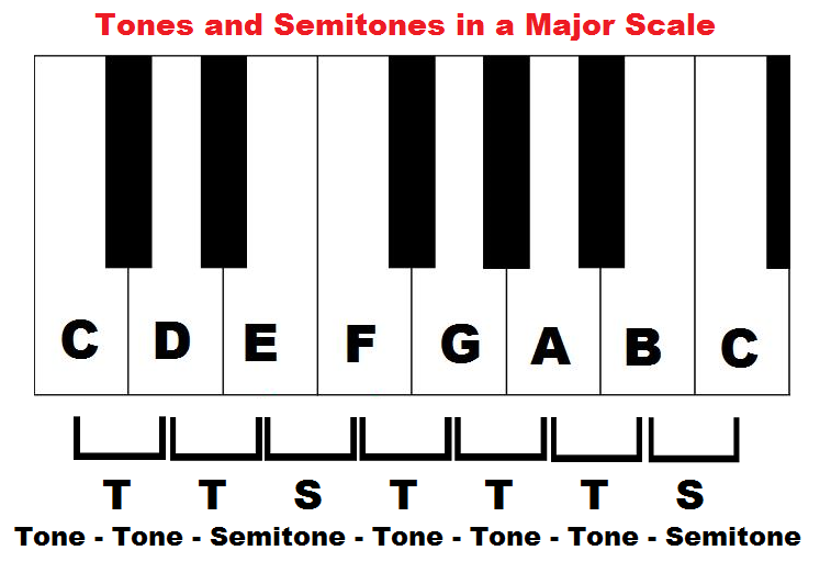 Tones and semitones in a major scale